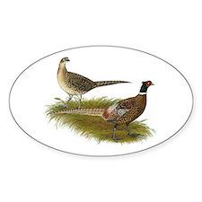 Ringneck Pheasant Pair Decal