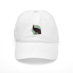 Congo Peafowl Baseball Cap