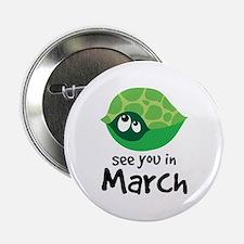 "Turtle Pregnancy Due In March 2.25"" Button"