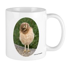 Tilt - Burrowing Owlet