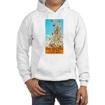 Double Ferris Wheel At The Pi Hooded Sweatshirt