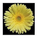 Yellow Gerbera Daisy Tile Coaster