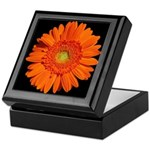 Orange Gerbera Daisy Keepsake Box