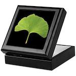 Ginkgo Leaf Keepsake Box