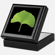 Ginkgo Leaf Keepsake Box