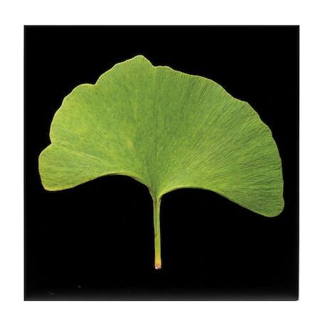 Ginkgo Leaf Tile Coaster