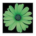 African Daisy Tile Coaster