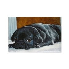 Resting Black Pug Puppy Rectangle Magnet