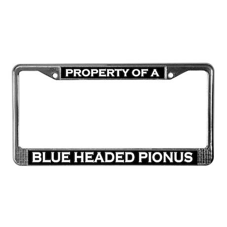 Property of Blue Headed Pionus License Plate Frame