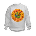 Florida Divison of Motor Vehi Kids Sweatshirt