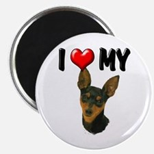 I Love My Min Pin Magnet