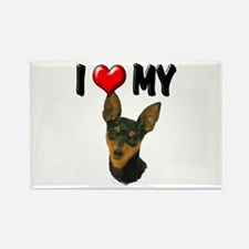 I Love My Min Pin Rectangle Magnet (10 pack)