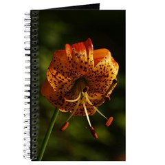 Columbia Lily Journal