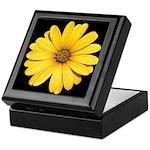 African Daisy Keepsake Box