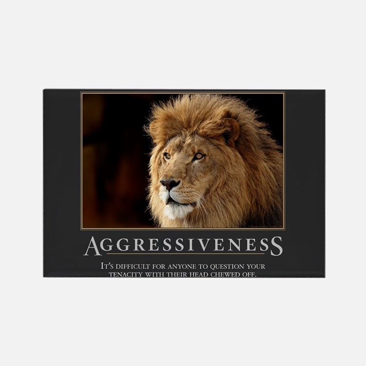 Aggressiveness Rectangle Magnet (100 pack)
