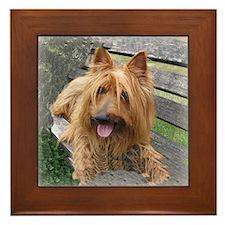 Awesome Australian Terrier Framed Tile