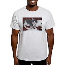 Cute Cute cat T-Shirt