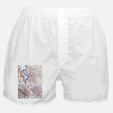 Unique Gil Boxer Shorts