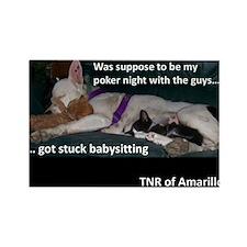 Dog Babysitting Kittens Rectangle Magnet
