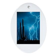 Sonoran Storm Ornament (Oval)