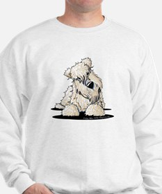 Curious Wheaten Terrier Sweatshirt