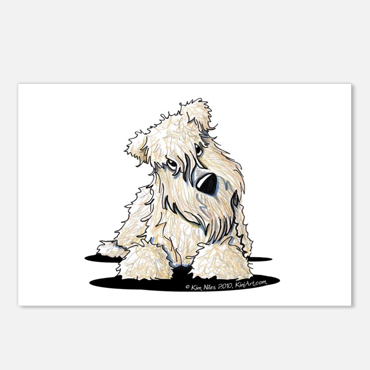 Curious Wheaten Terrier Postcards (Package of 8)