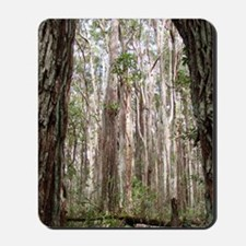 Molokai Cathedral Forest Mousepad