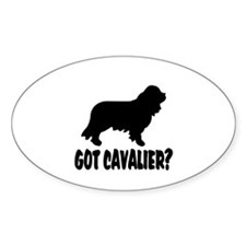 Got Cavalier? Decal