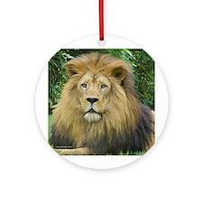 Lion - close up Ornament (Round)