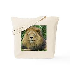 Lion - close up Tote Bag