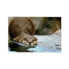 River Otter (Gone Fishin) Rectangle Magnet