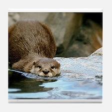 River Otter (Gone Fishin') Tile Coaster