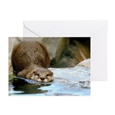 River Otter (gone Fishin) Greeting Cards (pk Of 20