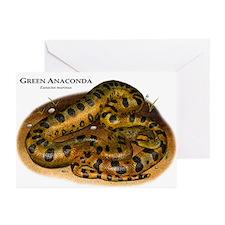 Green Anaconda Greeting Cards (Pk of 20)