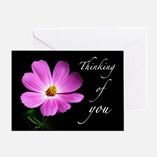 Pink Cosmos Flower Thinking of You Greeting Card