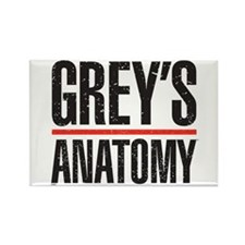 Grey's Faded Rectangle Magnet