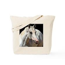 Carlyle Tote Bag