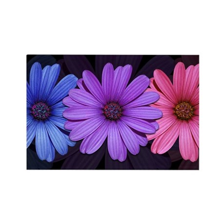 African Daisy Rectangle Magnet
