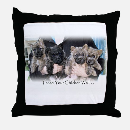 """Teach Your Children Well"" Throw Pillow"