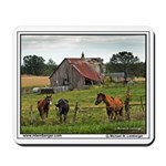 Farm, Horses, Barn Falling in, Mousepad