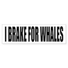 I BRAKE for WHALES parody Bumper Sticker