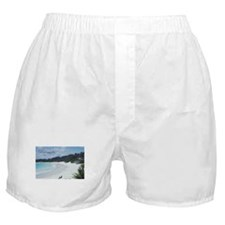 Bermuda Beach Boxer Shorts