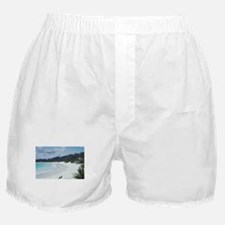 Bermuda Beach Boxer Shorts