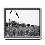Harvesting Corn for sick friend, IowaMousepad