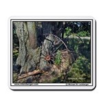 Tree grows into Hay Rake, Iowa, Mousepad