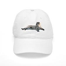 Romeo Hats CougarWear Baseball Cap