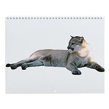 Romeo Cougar Printed Stuff Wall Calendar