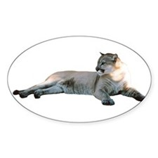 Romeo Home & Office CougarWea Oval Decal