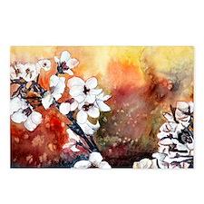 Japanese cherry blossom flowe Postcards (Package o