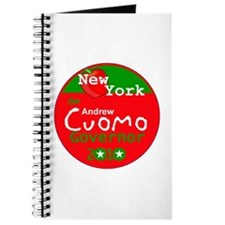 Cuomo 2010 Journal
